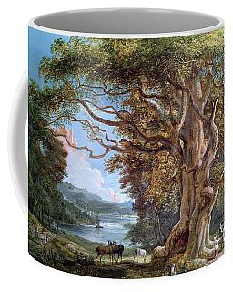 An Ancient Beech Tree Coffee Mug