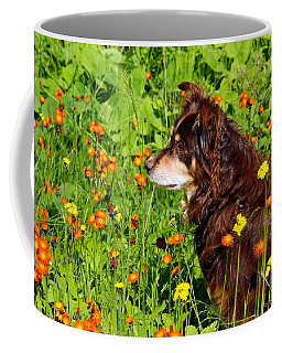Coffee Mug featuring the photograph An Aussie's Thoughtful Moment by Debbie Oppermann