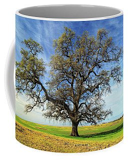An Oak In Spring Coffee Mug by James Eddy