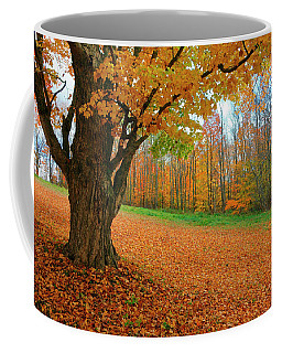 An Old Maple Tree In Autumn Color Coffee Mug