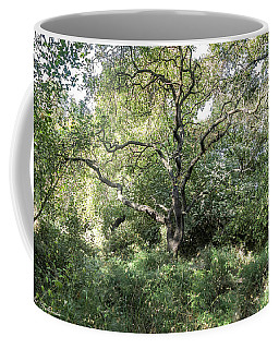 An Old One In The Forest Coffee Mug by Arik Baltinester
