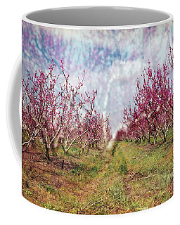 An Orchard In Blossom In The Golan Heights Coffee Mug