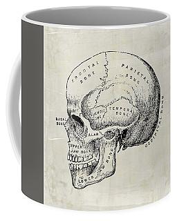 Anatomical Skull Medical Art Coffee Mug