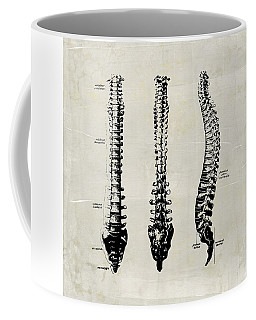 Anatomical Spine Medical Art Coffee Mug