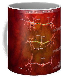Anatomy Structure Of Neurons Coffee Mug