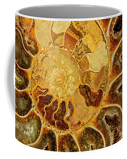 Ancient Ammonite Coffee Mug