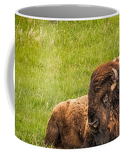 Coffee Mug featuring the photograph Ancient Bison by Rikk Flohr