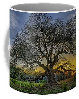 Ancient Live Oak Tree Coffee Mug