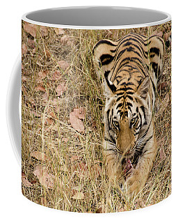 And A Bone To Chew On ... Coffee Mug by Pravine Chester