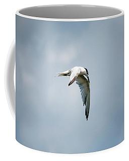 And Still The World Terns Coffee Mug