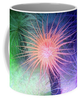 Coffee Mug featuring the photograph Anemone Color by Anthony Jones