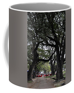 Angkor Wat Trees Coffee Mug