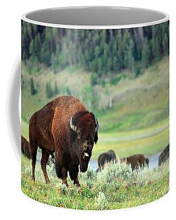 Angry Buffalo Coffee Mug