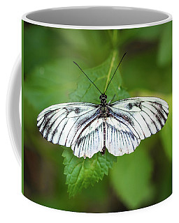 Angry Butterfly With A Mustache Coffee Mug