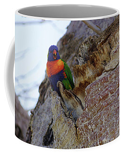 Coffee Mug featuring the photograph Angry Lorikeet by Cassandra Buckley