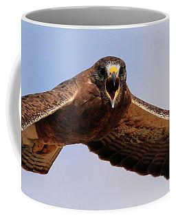 Angry Swainson's Hawk Coffee Mug