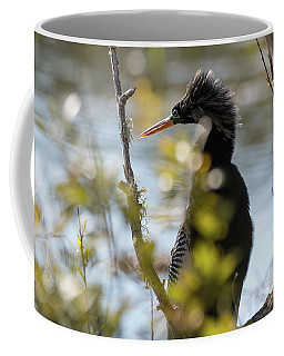 Anhinga 3 March 2018 Coffee Mug