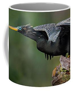 Anhinga Anhinga Anhinga, Costa Rica Coffee Mug
