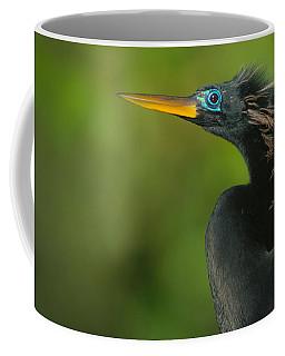 Anhinga Anhinga Anhinga, Tortuguero Coffee Mug