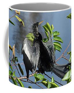 Anhinga Beauty Shot Coffee Mug