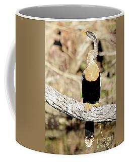 Anhinga Hanging Out Coffee Mug