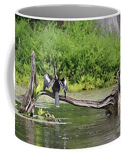 Anhinga On Cypress Log Coffee Mug