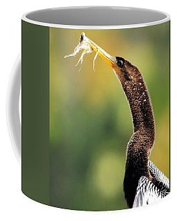 Anhinga With Plastic Coffee Mug