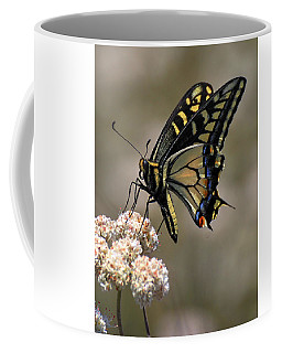 Anise Swallowtail Coffee Mug