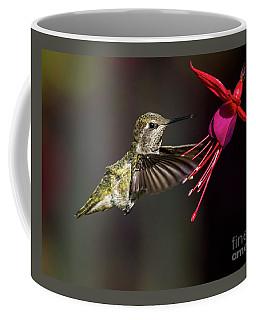 Anna Juvenile Hummingbird Coffee Mug