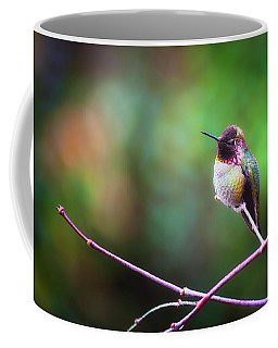 Anna's Hummingbird I Coffee Mug