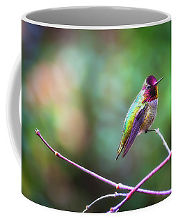 Anna's Hummingbird II Coffee Mug