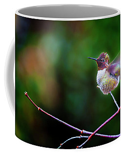 Anna's Hummingbird IIi Coffee Mug