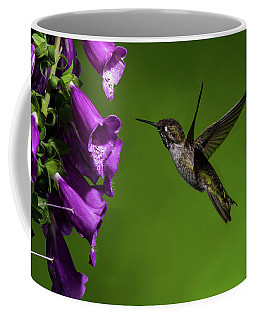 Coffee Mug featuring the photograph Anna's Hummingbird With Fox Glove Flowers by Lara Ellis