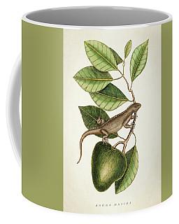 Anona Maxima Botanical  Coffee Mug