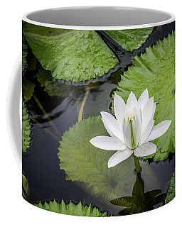 Another Lily Coffee Mug