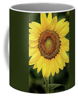Another Stunning Flower Coffee Mug