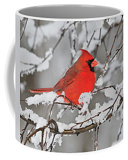 Coffee Mug featuring the photograph Anticipation by Tony Beck