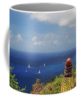 Coffee Mug featuring the photograph Antigua Cactus by Gary Wonning