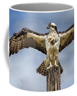 Anyone Have A Hairdryer? Coffee Mug