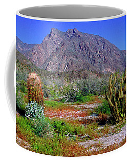 Anza-borrego Desert State Park Ca Coffee Mug