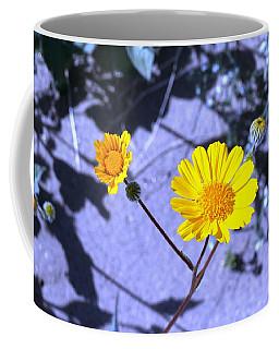 Anza Flower Coffee Mug