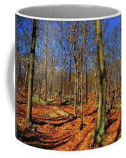Appalachian Trail Goes Through Harriman State Park Coffee Mug by Raymond Salani III