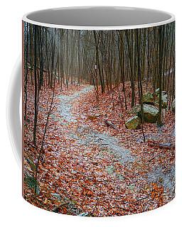 Coffee Mug featuring the photograph Appalachian Trail Heads Up Denning Hill In Ny by Raymond Salani III