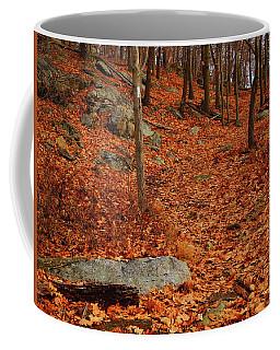 Coffee Mug featuring the photograph Appalachian Trail In Ny South Mountain by Raymond Salani III