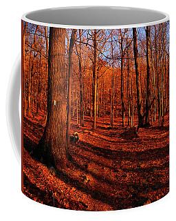 Appalachian Trail Newyork's Green Pond Mountain Coffee Mug by Raymond Salani III