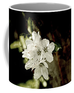 Apple Blossom Paper Coffee Mug