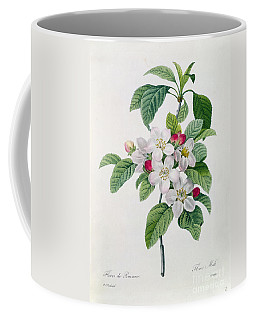 Designs Similar to Apple Blossom