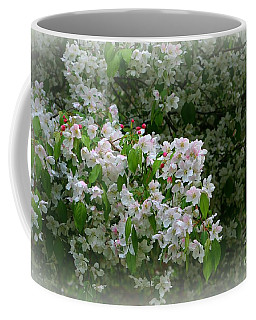 Apple Blossom Time Coffee Mug by Barbara S Nickerson