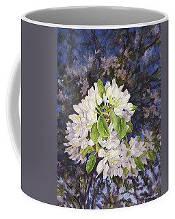 Apple Blossoms At Dusk Coffee Mug by Anne Gifford