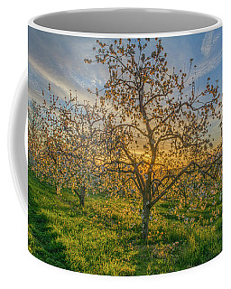 Apple Blossoms At Sunrise 2 Coffee Mug